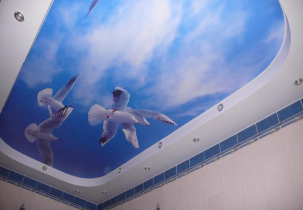 двухуровневый натяжной потолок в ванной с фотопечатью